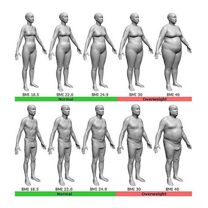 BMI index chart